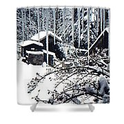 Winter In The Henhouse Shower Curtain