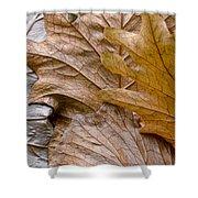 Autumn Leaves Of Gold Shower Curtain