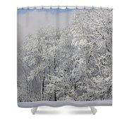 Winter Life Shower Curtain