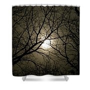 Winter Moon On A Cold Foggy Winter Night Shower Curtain