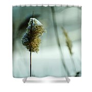 Winter Music Shower Curtain