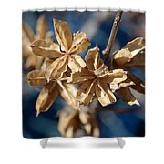 Winter Remainder Shower Curtain