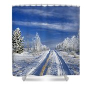 Winter Rural Road Shower Curtain