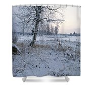 Winter Scene With Snow-covered Grasses Shower Curtain