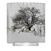 Winter Sentinel Shower Curtain