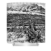 Winter Sets In Shower Curtain