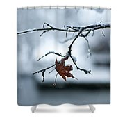 Winter Solo Shower Curtain