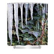 Winter Still Shower Curtain