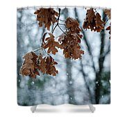 Winter Takes Hold Shower Curtain