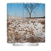 Winter Tree Nachusa Grasslands Shower Curtain