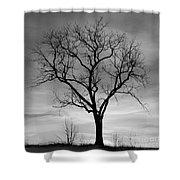 Winter Tree Silhouette Shower Curtain