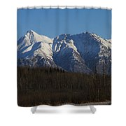 Winter View Shower Curtain
