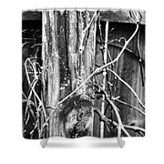 Wintered And Weathered Shower Curtain