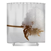 Winters Blossom Shower Curtain