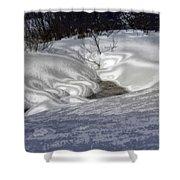 Winter's Satin Blanket Shower Curtain