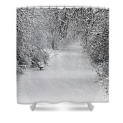 Winter's Trail Shower Curtain