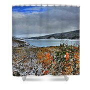 Wintry Dusting Shower Curtain