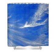 Wispy White Shower Curtain
