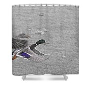 With The Finishing Line In Sight  Shower Curtain