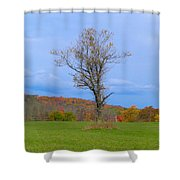 Without A Forest Shower Curtain