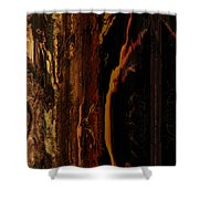 Wizened Shower Curtain