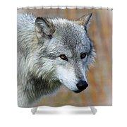 Wolf Profile Shower Curtain