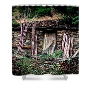 Wolf's Lair Shower Curtain