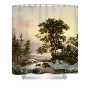 Wolves In A Winter Landscape Shower Curtain
