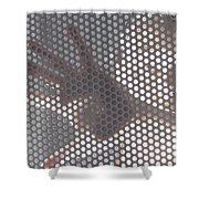 Woman Behind A Metal Mesh Shower Curtain