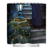 Woman In Dark Gown On Old Staircase Shower Curtain