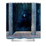 Woman In Jail Shower Curtain by Jill Battaglia