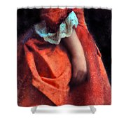Woman In Red 18th Century Gown Shower Curtain