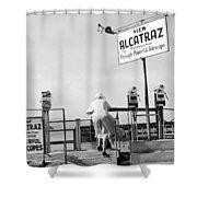 Woman Looking At Alcatraz Shower Curtain