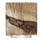 Wood Design Shower Curtain