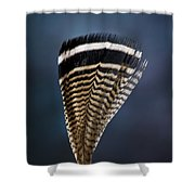 Wood Duck Feather Shower Curtain