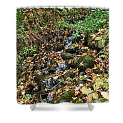 Wooded Creek Shower Curtain