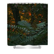 Wooded Dream  Shower Curtain
