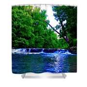 Wooded Waterfall Shower Curtain by Bill Cannon