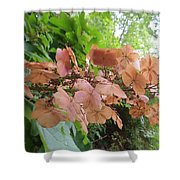Wooden Hydrangea Shower Curtain