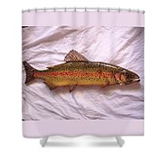 Wooden Rainbow Trout Number Nine Shower Curtain