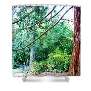 Woodland And Huge Tree Illustration Shower Curtain