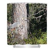 Woodland Great Blue Heron Shower Curtain