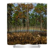 Woodland Rainbow Shower Curtain