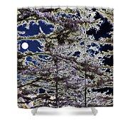Woodland Solitude Shower Curtain