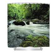 Woodland Stream And Rapids, Time Shower Curtain