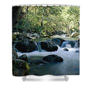 Woodland View Of A Small Creek Flowing Shower Curtain