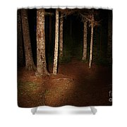 Woods At Night Shower Curtain