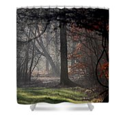 Woods - Dirt Road Photo - The Quiet Place Shower Curtain