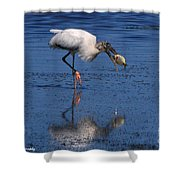 Woodstork Catches Fish Shower Curtain