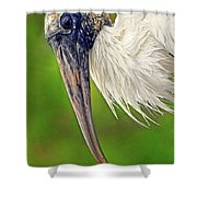Woodstork Portrait Shower Curtain